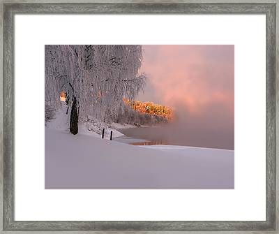 Winter Light Framed Print by Rose-Maries Pictures