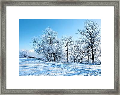 Winter Lights Framed Print by Svetlana Sewell