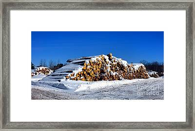 Winter Logs Framed Print by Olivier Le Queinec