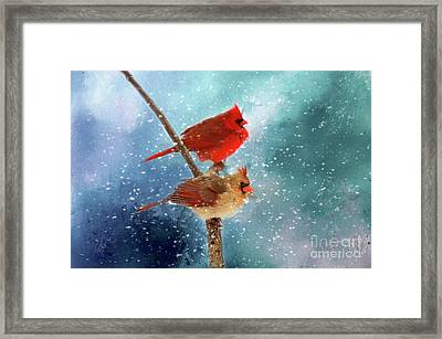 Winter Love Framed Print by Darren Fisher