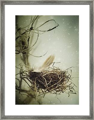 Framed Print featuring the photograph Winter Lullaby by Amy Weiss