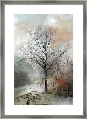 Winter Magic Framed Print
