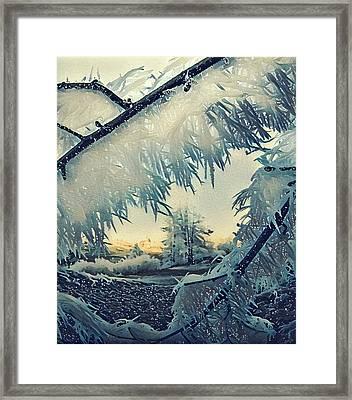 Winter Magic Framed Print by Colette V Hera Guggenheim