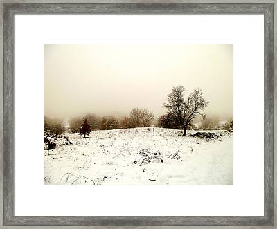 Winter Magic Landscape Framed Print