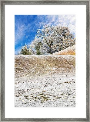 Winter Framed Print by Meirion Matthias