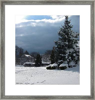 Winter Framed Print by Mikki Cucuzzo