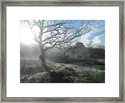 Winter Mist Framed Print