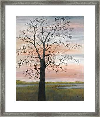 Winter Mood Framed Print by Shirley Lawing