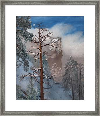 Winter Moon Framed Print