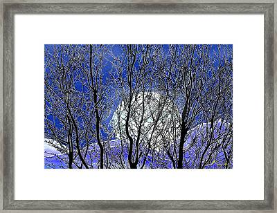 Winter Moon Framed Print by John Selmer Sr