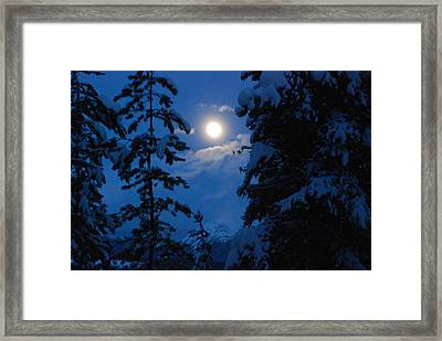 Winter Moonlight Framed Print
