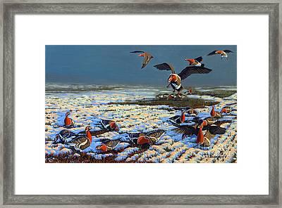 Winter Morning In Primorska Dobrudja Framed Print