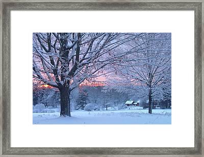 Winter Morning Framed Print by John Burk