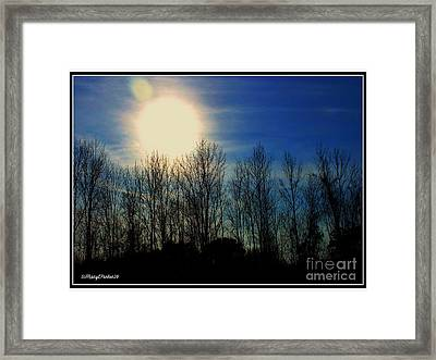 Winter Morning Framed Print by MaryLee Parker