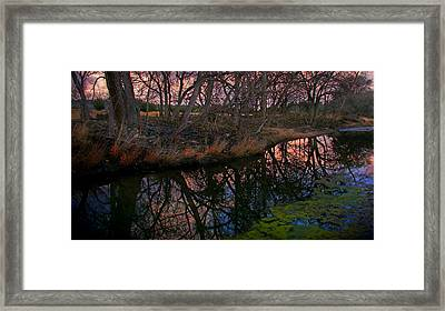 Winter Morning Repose 2 Framed Print