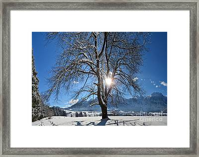 Winter Morning Framed Print by Sabine Jacobs
