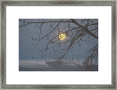 Framed Print featuring the photograph Winter Mornings by Al Swasey