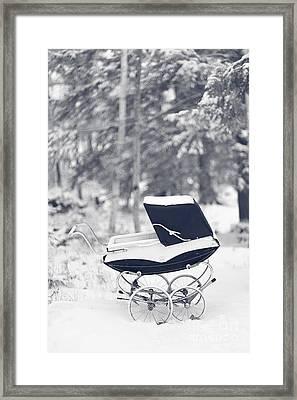 Winter Mystery Framed Print