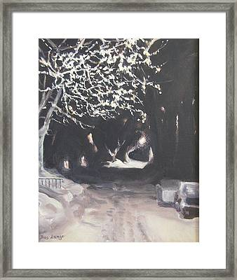 Winter Night Framed Print by Donna Lange