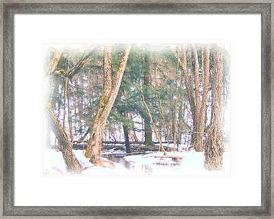 Winter Oasis Framed Print