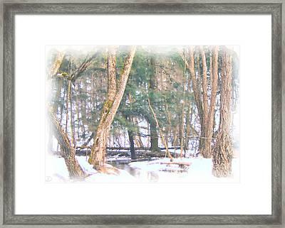 Winter Oasis Framed Print by Debi Dmytryshyn