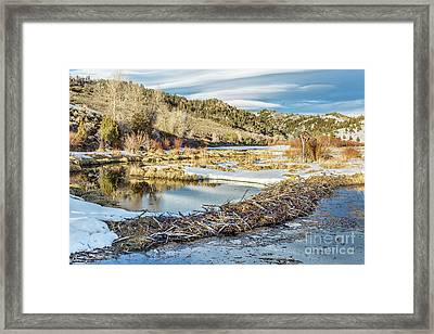 Winter On Beaver Swamp Framed Print by Marek Uliasz