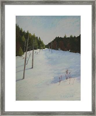 Winter On Moose Pond Framed Print