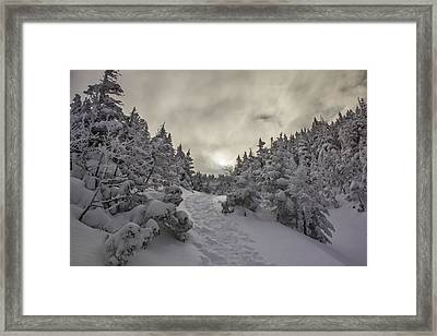 Winter On The Ammo Trail Framed Print