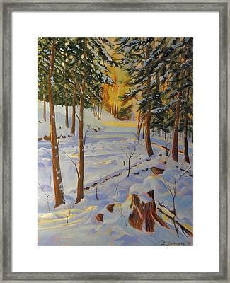 Winter On The Lane Framed Print