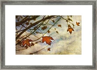Winter On The Way Framed Print