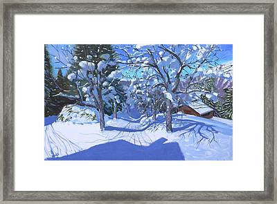 Winter Orchard  Morzine Framed Print by Andrew Macara