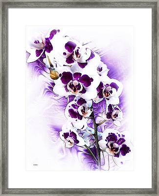 Winter Orchid Framed Print