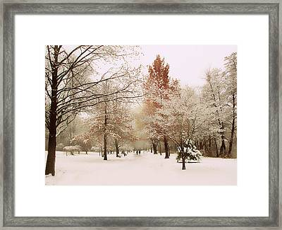 Winter Park Framed Print by Jessica Jenney
