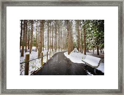 Winter Path At Retzer Nature Center  Framed Print by Jennifer Rondinelli Reilly - Fine Art Photography