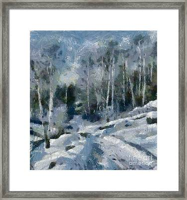 Winter Path Framed Print by Dragica Micki Fortuna