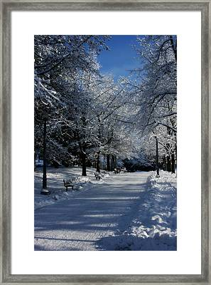 Winter Path Framed Print