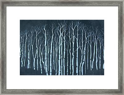 Winter Framed Print by Pati Hays