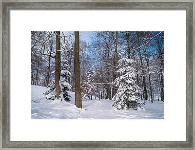 Winter Perfection Framed Print by Jenny Rainbow