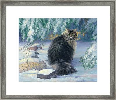Winter Place Framed Print