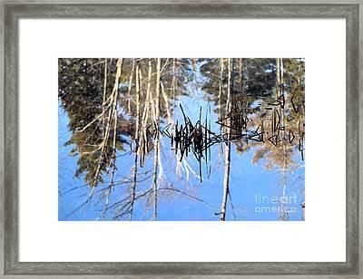 Winter Pond Framed Print by Elizabeth Dow