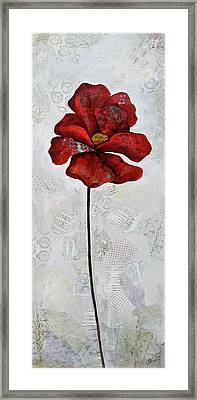Winter Poppy I Framed Print by Shadia Derbyshire