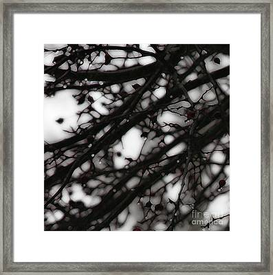 Framed Print featuring the photograph Winter Rain - 2 by Linda Shafer