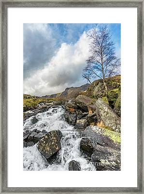 Winter Rapids Of Snowdonia Framed Print by Adrian Evans