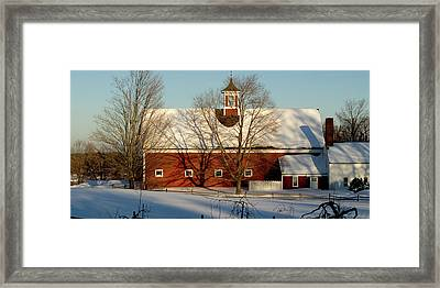 Winter Red Framed Print by Paul Gaj