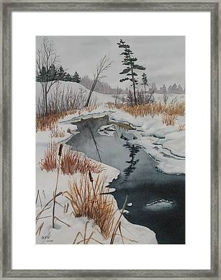Winter Reflection Framed Print by Debbie Homewood