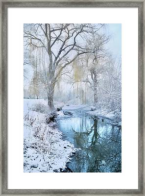 Winter Reflections In Blue Framed Print
