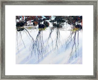 Winter Reflections Framed Print by Judi Bagwell