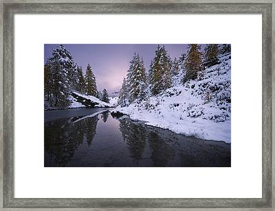 Winter Reverie Framed Print