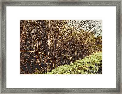 Winter Rural Tasmania Details Framed Print by Jorgo Photography - Wall Art Gallery