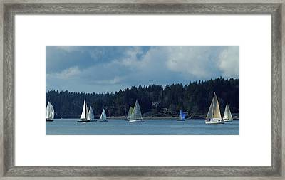 Winter Sailing In Puget Sound Framed Print by Lori Seaman